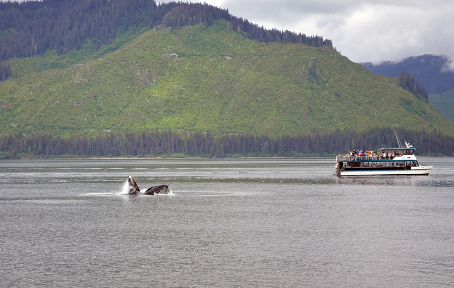 Icy Strait Point Alaska Map.New Pier To Be Built At Icy Strait Point Alaska Safety4sea
